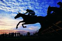 Lessons from horse racing: Using social media to make events more social