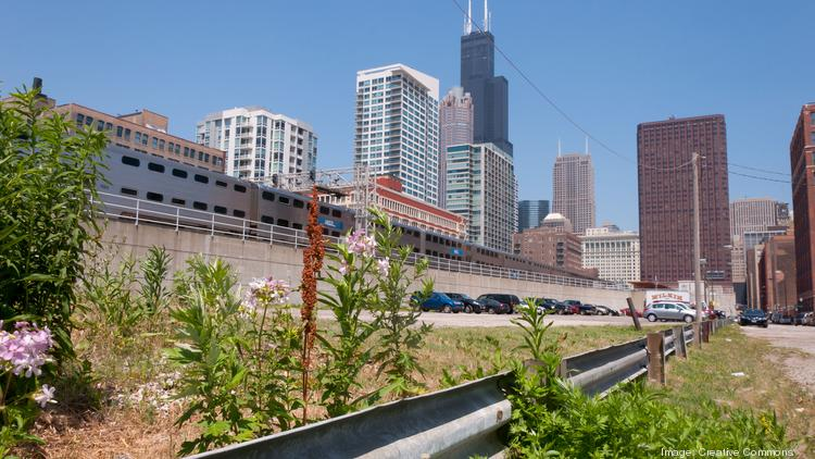Weeds grow alongside a guardrail in Chicago.