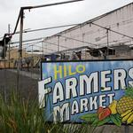 Checking in with the Hawaii Island Chamber of Commerce after Iselle: Slideshow