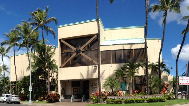 The Howard Hughes Corp. plans to replace the Ward Warehouse shopping center in Honolulu with several condominium towers. The Texas-based developer plans to present the plans to the Hawaii Community Development Authority at a hearing on Oct. 1.