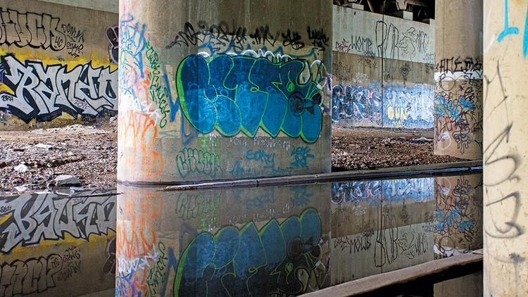 Litter, stagnant water and graffiti abound under the Jones Falls Expressway, where Section 1 Project's park may go.