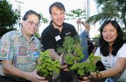 From left, Marc Alexander, director of community relations and development for the Institute for Human Services; Glenn Sexton, vice president and general manager of Xerox Hawaii; and, Connie Mitchell, executive director for the Institute for Human Services, plant vegetable seedlings to replenish IHS' vertical garden. Xerox Hawaii also donated $2,500 to cover the cost of planting materials and provided a group of employees and volunteers to help with the planting.