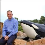 5 things to start the day: The cost of Christmas, SeaWorld CEO steps down (Video)