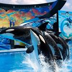 7 things to know about today, plus SeaWorld's increased spending on lobbying