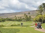 A golfer tees off at the Ko Olina Golf Club this week. The course has not yet  signed a contract to host the LPGA Lotte Championship in 2015.