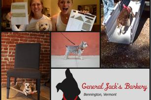 Kickstarter goes to the dogs: 5 'petpreneur' projects in honor of Dog Appreciation Day