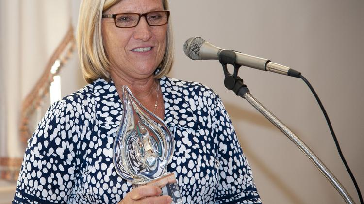 The High Point Chamber of Commerce has named Mena Parrish, general manager of the J.H. Adams Inn and chairwoman of High Point Convention and Visitors Bureau, as its 2014 Businesswoman of the Year award.