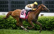 Wise Dan won the Woodford Reserve Turf Classic on Derby Day.