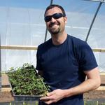 Large-scale hydroponic farming taking seed in Albuquerque