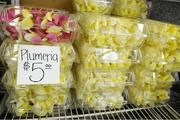Plumeria lei are seen at Jenny's Leis & Flowers in Honolulu, which is gearing up for Mother's Day and graduations this month.