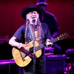 Willie Nelson, <strong>Ray</strong> <strong>Benson</strong> top flood relief benefit shows