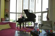 What better backdrop for an elegant grand piano than the downtown Austin skyline?