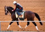 No. 3: Titletown Five trained by D. Wayne Lukas; 30-1 odds as of Thursday morning