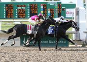 No. 5: Mylute, jockey in pink, trained by Tom Amoss; 5-1 odds as of Thursday morning