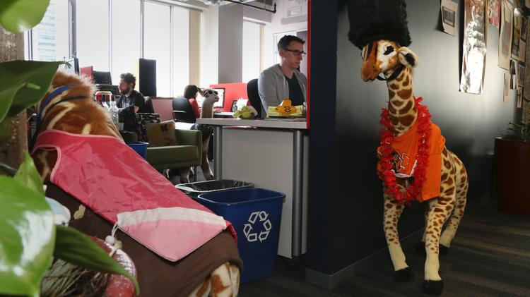 Giraffes guard an area where iOS developers work at eBay's downtown Portland office. Portland is home to eBay's hub for all things mobile. The employees at this office develop eBay Marketplace mobile apps.