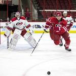 Carolina Hurricanes banking on playoffs and revenue diversity as 2014-15 season kicks off