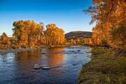 Ryan Wood's ranch sits along the banks of Elk River in Colorado.