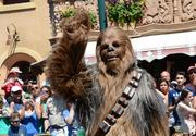 Yes, Chewie, you're still taller than everybody.