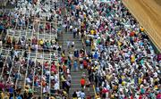 The crowd starts to fill in at Pimlico Race Course for the Preakness.