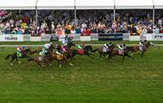 Horses race around the turf track in the Longines Dixie Stakes.