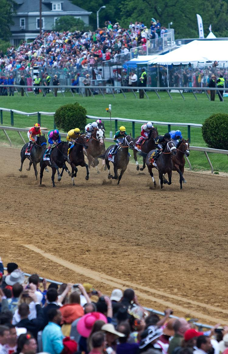 Horses race around the track in the 138th running of the Preakness Stakes at Pimlico Race Course on Saturday.