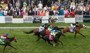 Horses race around the turf track in the Longines Dixie Stakes undercard at Pimlico Race Course on Saturday.