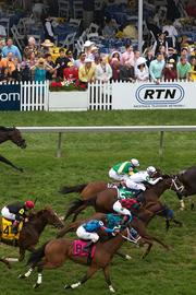 Horses race around the turf track in the Longines Dixie Stakes undercard race at Pimlico Race Course on Saturday.