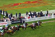 Horses race around the turf track in the Longines Dixie Stakes undercard race Pimlico Race Track on Saturday.