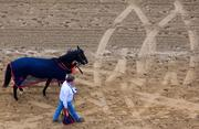 Horses and trainers make their way down the track for the Longines Dixie Stakes during Preakness at Pimlico Race Course on Saturday.