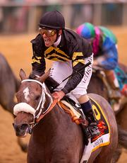 Hall of Fame jockey Gary Stevens shows excitement after riding Oxbow to Preakness victory.