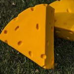 Looking beyond the cheesehead: How scaling up is Foamation's focus