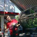 Strategies: Los Roast creates a chile pipeline from N.M.