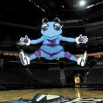 Charlotte Hornets homecoming a game changer