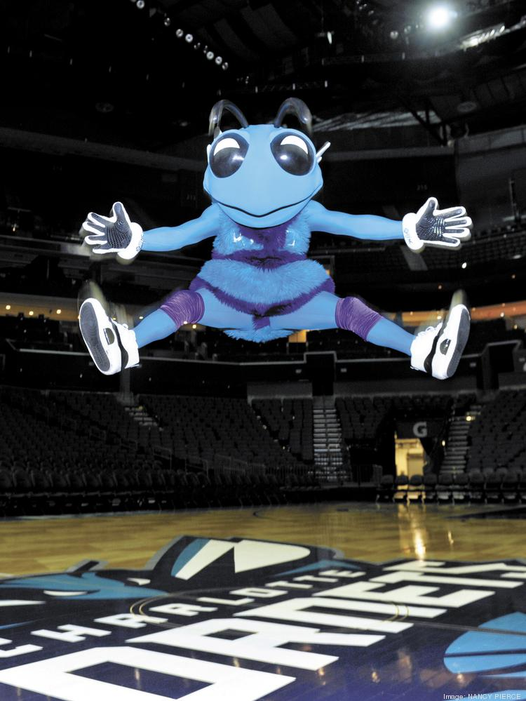 Charlotte Hornets Hope To Score With Data Mining