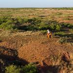 Will oil prices have an impact on the sale of Waggoner Ranch?