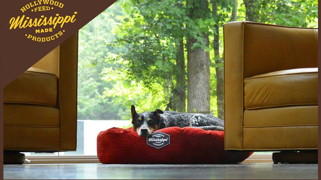 Hollywood Feed Is Going Global With Its Dog Beds