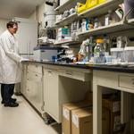 Washington state life sciences industry trails California, Massachusetts in federal grants