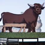Bull Durham Beer Co. registers with Capitol Broadcasting Co.