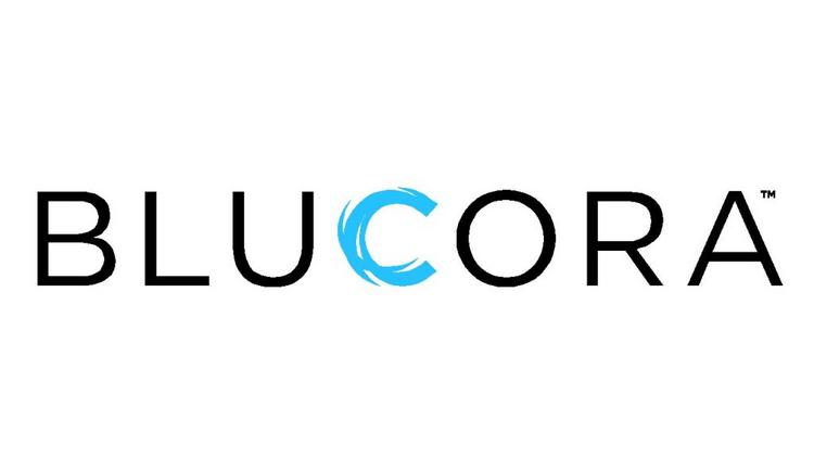 Blucora stock is tumbling today after an analyst firm released a report accusing the company of fraud, link-baiting, and other illicit business practices. Blucora fired back, denying the claims.