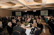 More than 240 people attended the inaugural C-Suite Awards luncheon.