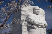 The Martin Luther King Jr. Memorial stands among cherry blossoms during the National Cherry Blossom Festival in March 2012.
