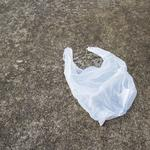 Plastic bag ban back on the table in Baltimore