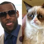 $100M or no, Grumpy Cat is the LeBron James of Internet memes