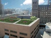 The researchers looked purely at economic returns and did note that green roofs have other benefits.