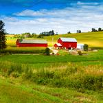 Two local banks rank among nation's top farm lenders