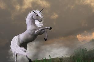 3 things you should know about unicorn startups