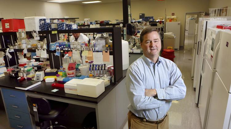 Sangamo BioSciences President and CEO Edward Lanphier has said that the company's gene-editing technique could provide a functional HIV cure.