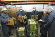 So Ono Food Products warehouse associates, from left, Solomon Pelep, McGyver Ada and Alex Muna pull an order for a customer while Liann Nakachi, inventory clerk, and Nathan Okinaka, director of operations, check the inventory.