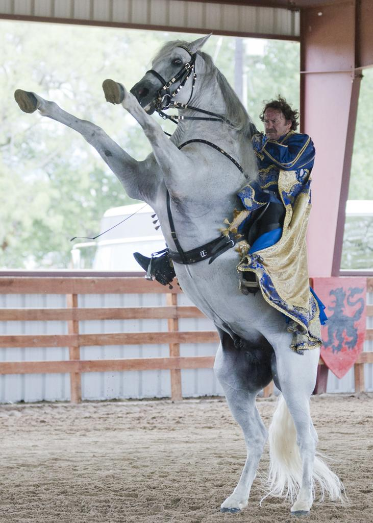 Head horse trainer at Chapel Creek Ranch, Victor de Lara aboard an Andalusian horse performing a trick.