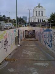 The bad old days: A tunnel near the lake back in 2010.